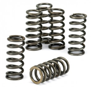 EBC CSK015 CLUTCH SPRING SET [6 PCS]
